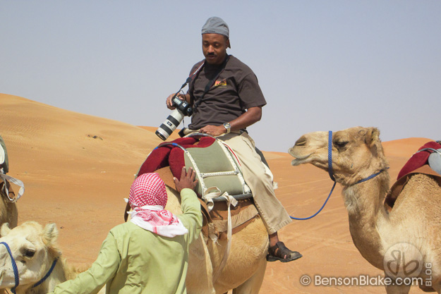 Camel riding in Al Ain, Abu Dhabi